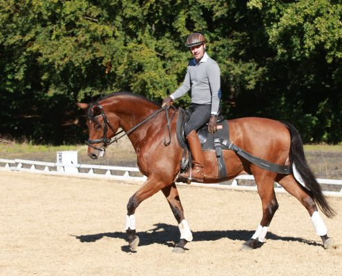 Claus_Toftgaard_rider_med_Equiband