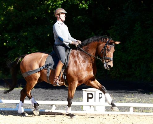 Claus_Toftgaard_rider_hest_med_Equiband
